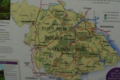 Cestujeme s pejsky po Anglii - New Forest