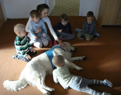 Canisterapie - psí terapie