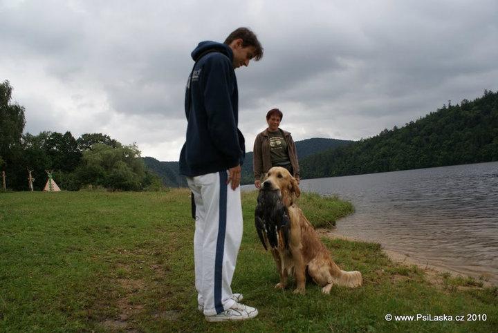 Jak naučit psa povel aport nebo-li přines