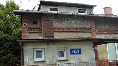 Dům, v němž majitelka chovala celkem 39 psů.