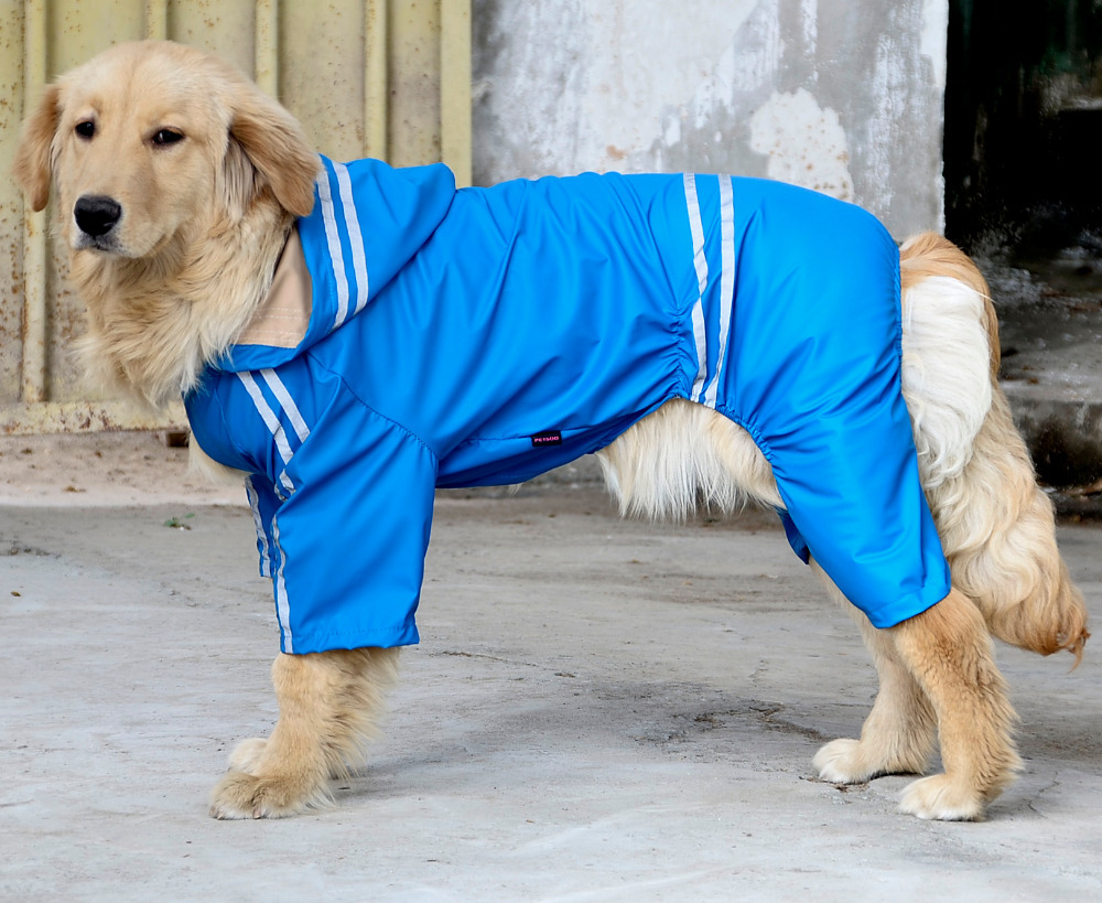 jak spravne změřit psa 3