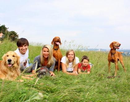 Psi a co o nich bylo řečeno