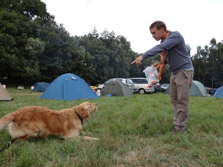 Obedience - Jak to chodí na psím táboře